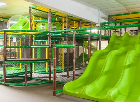 fun-in-the-jungle-slides
