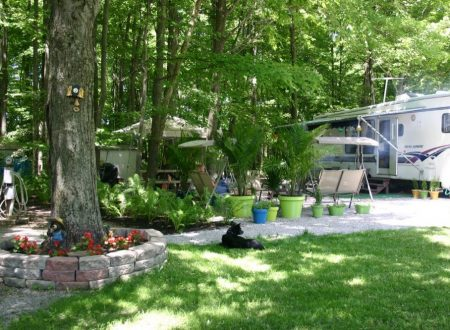 tree-haven-campground